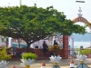 Mar Thoma 0363