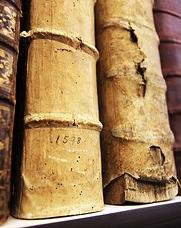 Od czterech do pięciu milionów książek o wartości historycznej znajduje się w posiadaniu bibliotek klasztornych w Austrii.