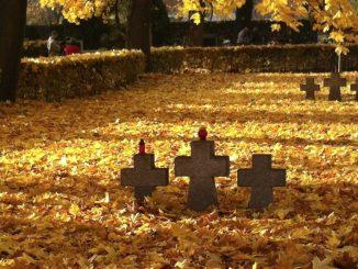 """Jak co roku przed 1 listopada w mediach pojawia się wiele publikacji związanych z przemijaniem, śmiercią, zmarłymi i życiem po życiu. Wszędzie w nich jest <a class=""""mh-excerpt-more"""" href=""""http://www.zyciezakonne.pl/opinie/felietony/swieto-zmarlych-czy-wszystkich-swietych-23230/"""" title=""""Święto Zmarłych czy Wszystkich Świętych?"""">[...]</a>"""