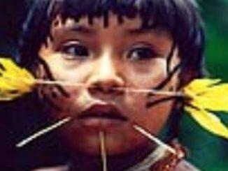 Siostry zakonne z różnych brazylijskich zgromadzeń odważnie stawiają czoła niepokojącej rzeczywistości szerzącego się handlu ludźmi i wykorzystywania seksualnego młodocianych w brazylijskim regionie Amazonii.