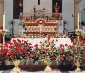 Relikwie św. Teresy od Dzieciątka Jezus