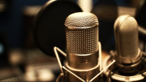 Mikrofon (za youtube.com)