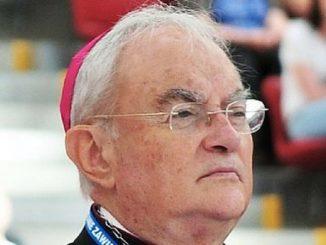 Przyczyną pogorszenia stanu zdrowia abp. Henryka Hosera jest malaria – poinformował w poniedziałek biskup pomocniczy diecezji warszawsko-praskiej Marek Solarczyk.