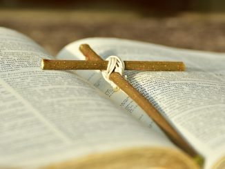 """Co to znaczy kochać Chrystusa? Jaka powinna być nasza miłość ku Niemu? Św. Franciszek z Asyżu w kazaniu podczas pasterki w Greccio, przy wymawianiu imienia <a class=""""mh-excerpt-more"""" href=""""https://www.zyciezakonne.pl/wiadomosci/kraj/o-naszej-pokornej-milosci-do-chrystusa-82657/"""" title=""""O naszej pokornej miłości do Chrystusa"""">[...]</a>"""
