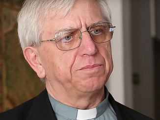 Działania Kościoła w sprawie wykorzystywania seksualnego małoletnich mają inspirować się duchem Ewangelii a nie PRem – powiedział dziś o. Adam Żak.