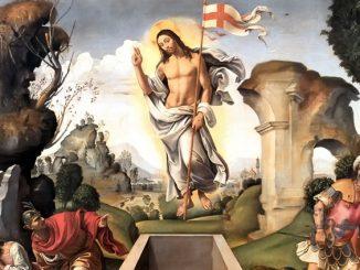 """Wierzymy w żywego Boga, który nie przestaje kochać i zbawiać. Wyznajemy, że Kościół jest nam drogi jak Matka. Trwamy w wierze, dzięki doświadczeniu miłości, przebaczenia <a class=""""mh-excerpt-more"""" href=""""https://www.zyciezakonne.pl/wiadomosci/kraj/wielkanocne-zyczenia-o-janusza-soka-cssr-85501/"""" title=""""Wielkanocne życzenia o. Janusza Soka CSSR"""">[...]</a>"""