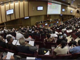 Coraz jaśniej wyłaniają się główne idee Synodu Biskupów dla Amazonii. Widać to w relacjach z roboczych grup językowych, które zostały zaprezentowane w watykańskim Biurze Prasowym.